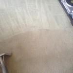 Carpet-Cleaning-Miami