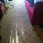 Miami-Carpet-Clean-before