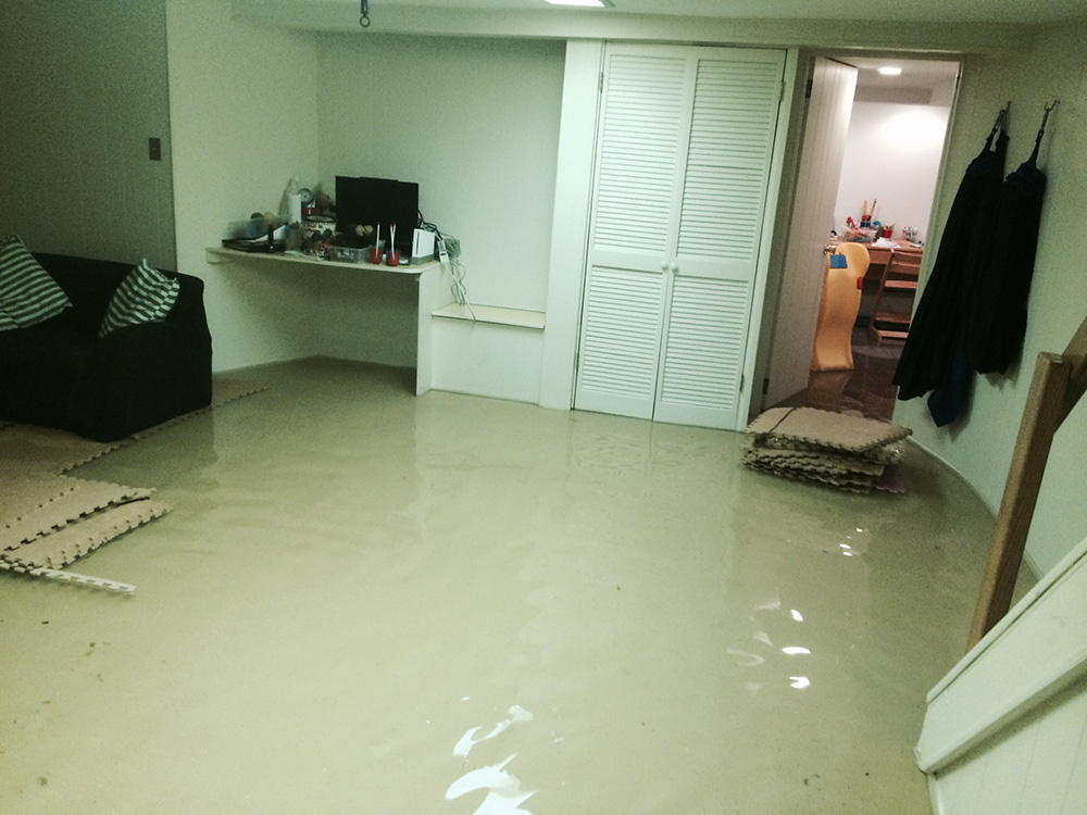 How Much Do Rvs Cost >> Water Damage Repair Miami | (786) 363-3900