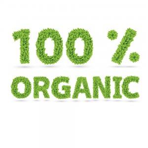 Organic-Carpet-Cleaning-Miami
