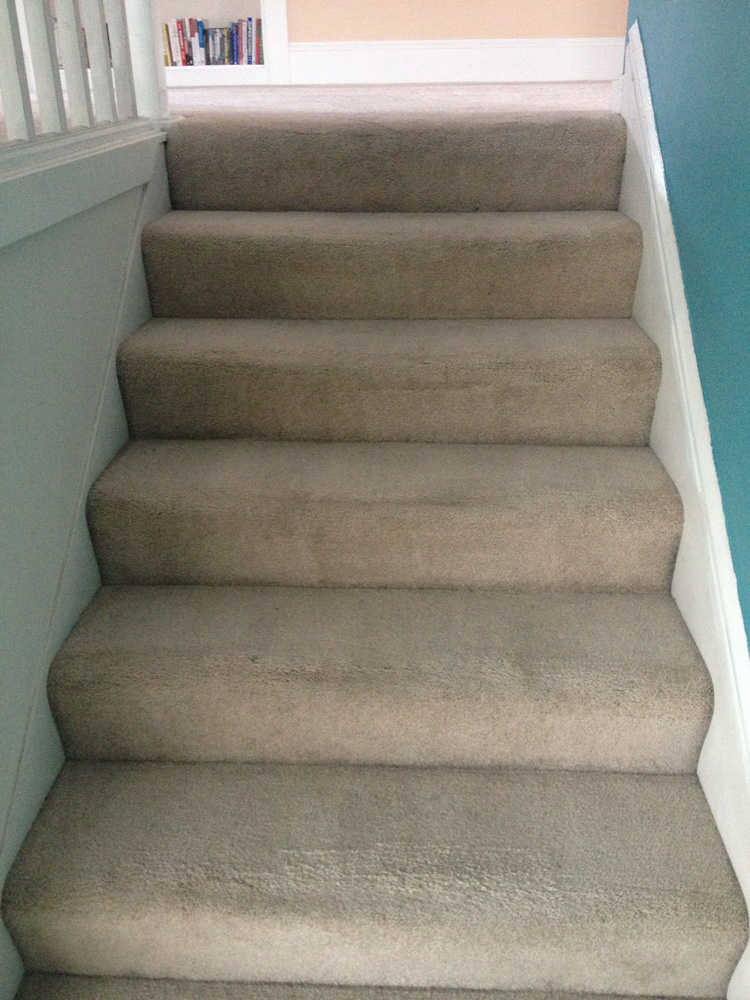 ... Stairs Carpet Cleaners Miami ...
