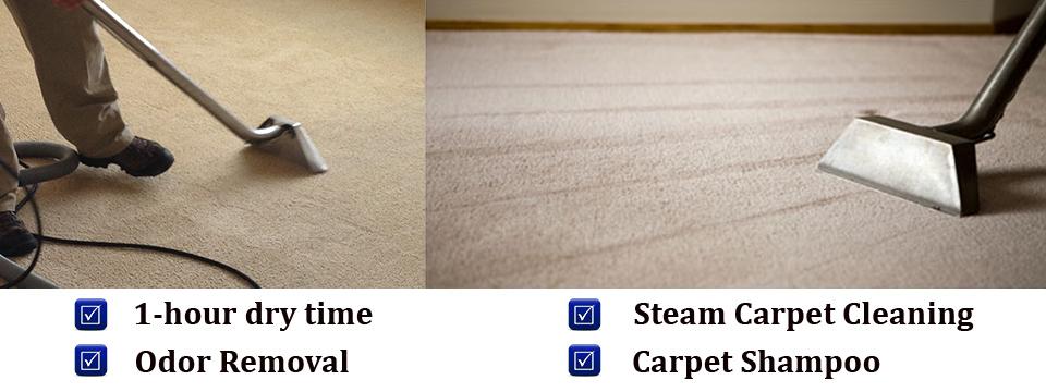 miami-carpet-banner